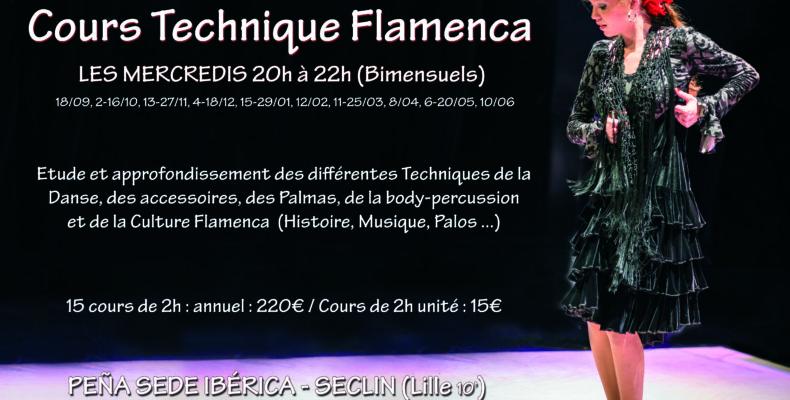 Flamenco Technique lille danse cours Nord Pas de Calais Picardie Hauts de France Estrella