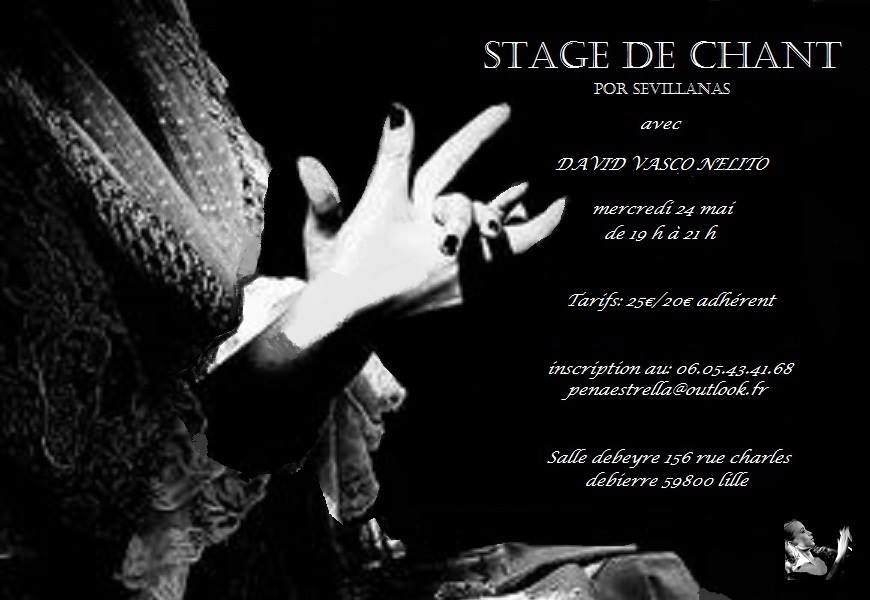 Stage de chant Flamenco Lille