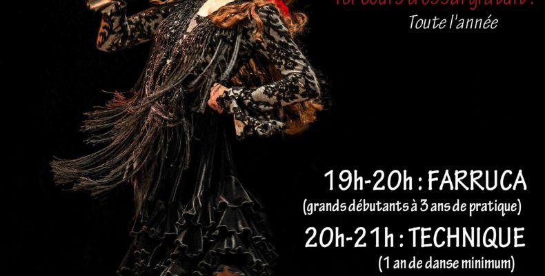 Flamenco lille Hauts de France Nord pas de calais picardie