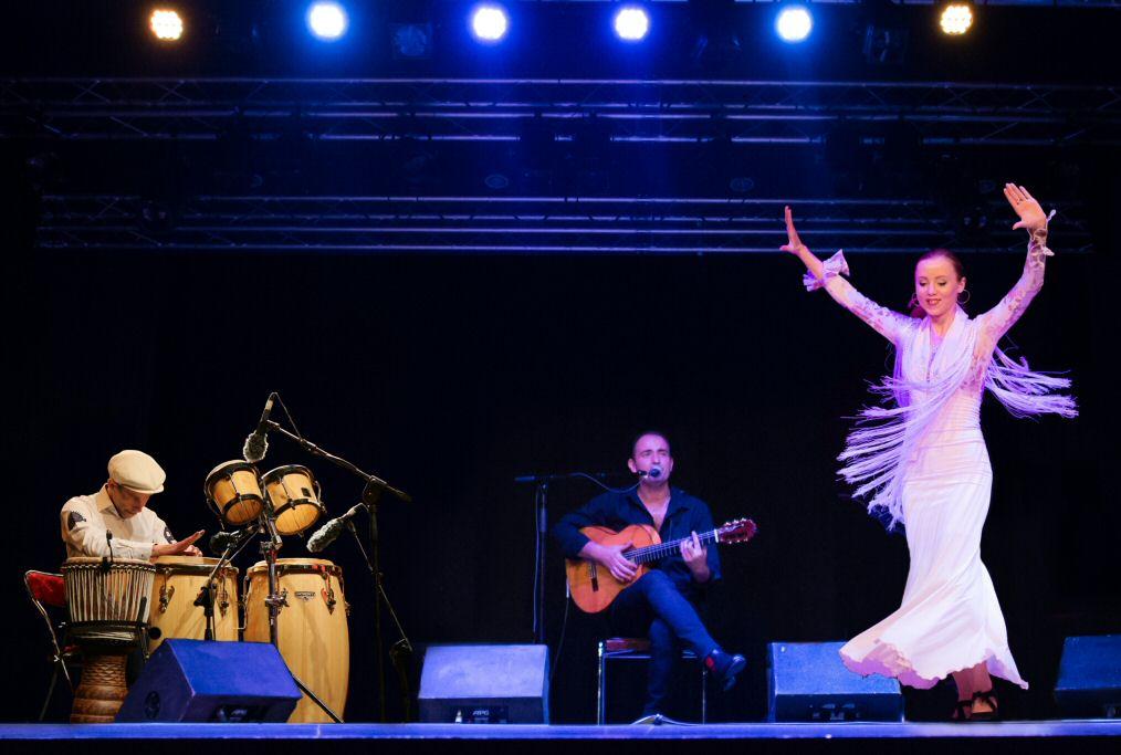 flamenco lille association ecole de danse