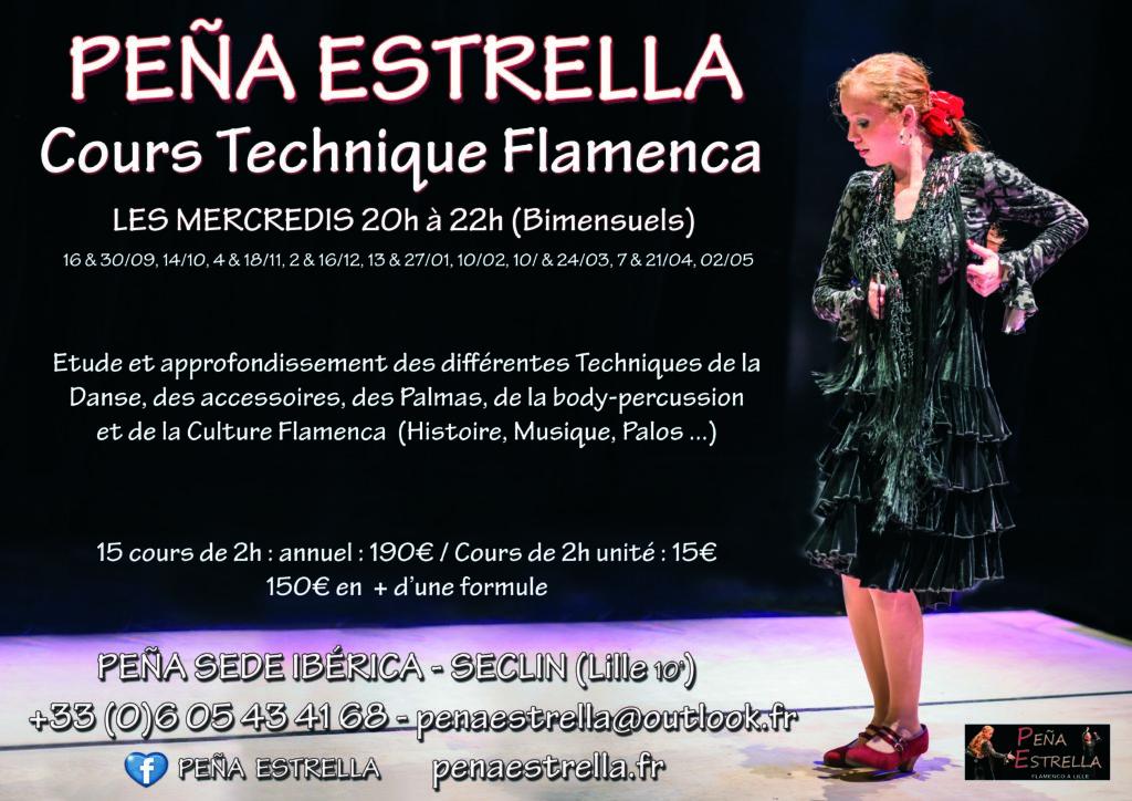 cours flamenco Lille Estrella Technique