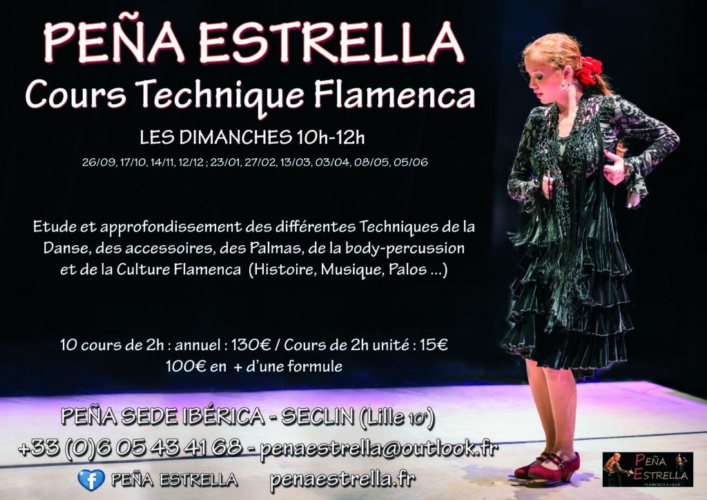 flamenco lille cours de danse peña estrella technique